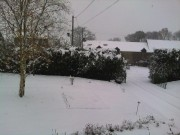 The Snow 2010 0a843e110168417